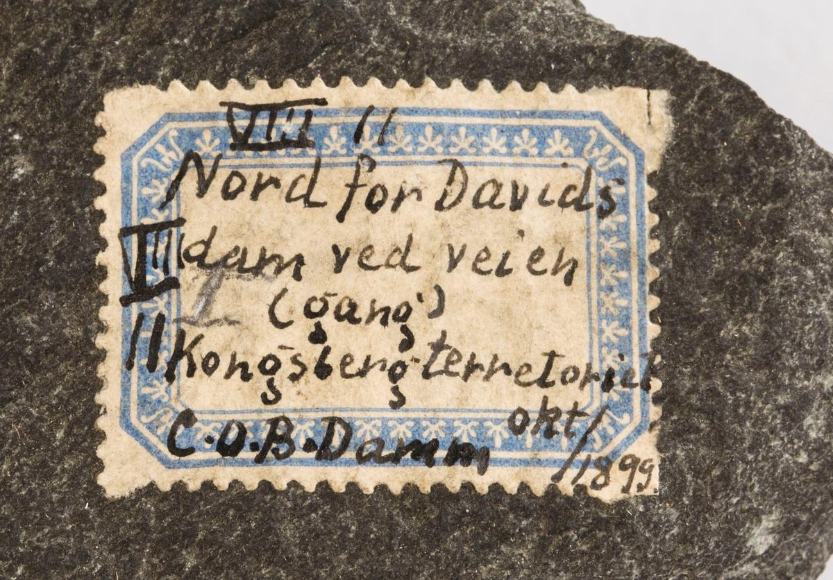 Etikett på prøve: VIII 11 Nord for Davids dam ved veien (gang) Kongsberg terretoriet C.O.B. Damm okt/1899.