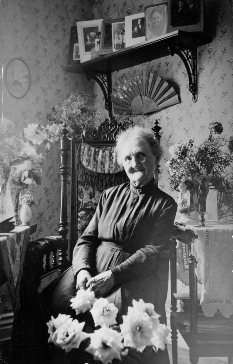Hanna Lundqvist, husföreståndarinna hos borgmästare Ackenström.