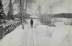 Julekort. Jule-og nyttårshilsen. Fotografi. Skigåer i vinter