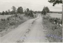 En grusväg i Dvärgstad utanför Gamleby.
