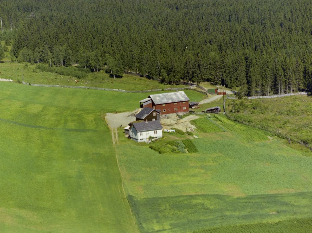 Bergestuen. Gårdsbruk. To stuer og driftsbygning. Dyrka mark. Granskog bak.