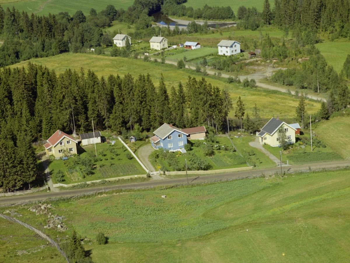 Linbakken. Småhusbebyggelse. To hvitmalte hus, ett lyseblått, alle med bær-og grønnsakhager.  Åkrer. Granskog. Grusvei.