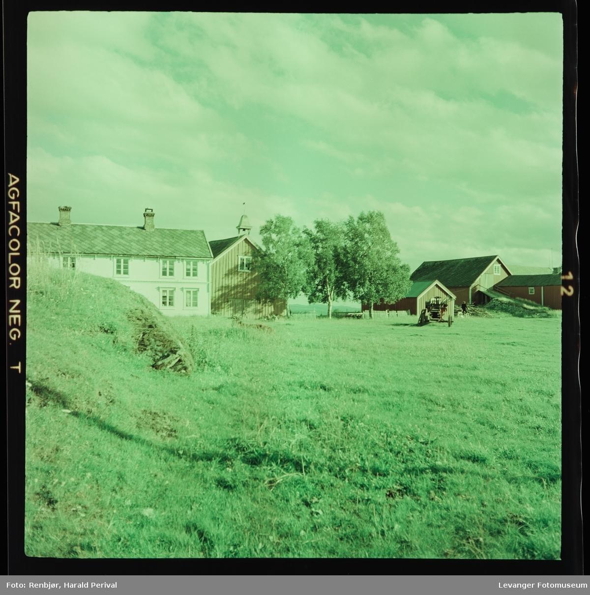 Logtun-gårdene på Frosta. Logtun østre til venstre, Logtun vestre til høyre.