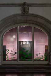 Nordiskt ljus, utställningsdokumentation, valvmontrar söder