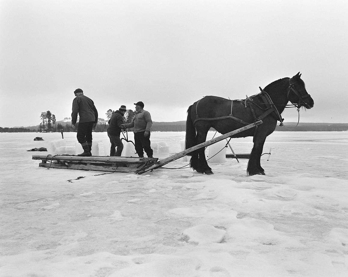 Isskjæring, Rokosjøen, Løten. Paul Nordvold, hest og slede, hesteredskap, iskjøring, isblokker, redskaper, Karsten Nysveen og ?