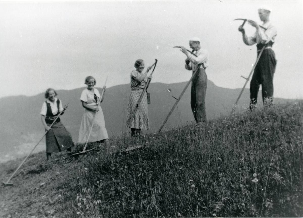 Frå slåttonn i 1930-åra.