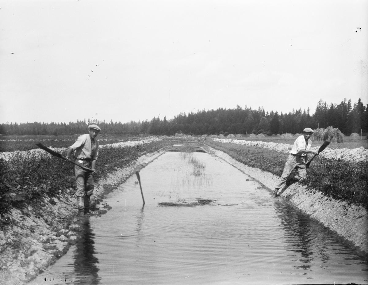 Gunnar och Ejnar Gestrin, Ravastbogrävningen, Ravastbo, Simtuna socken, Uppland 1922