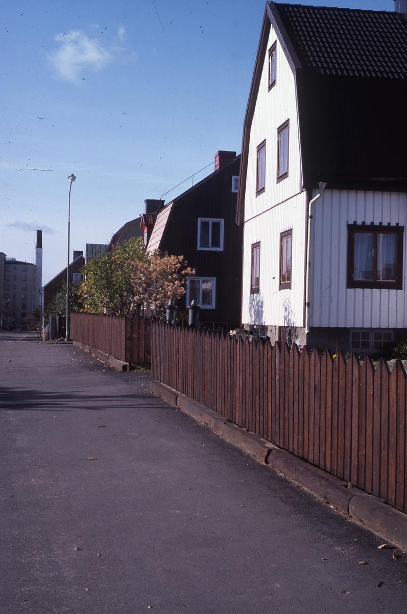 Styrmansgatan, kv Hackan 9 i förgrunden. Foto oktober 1984.