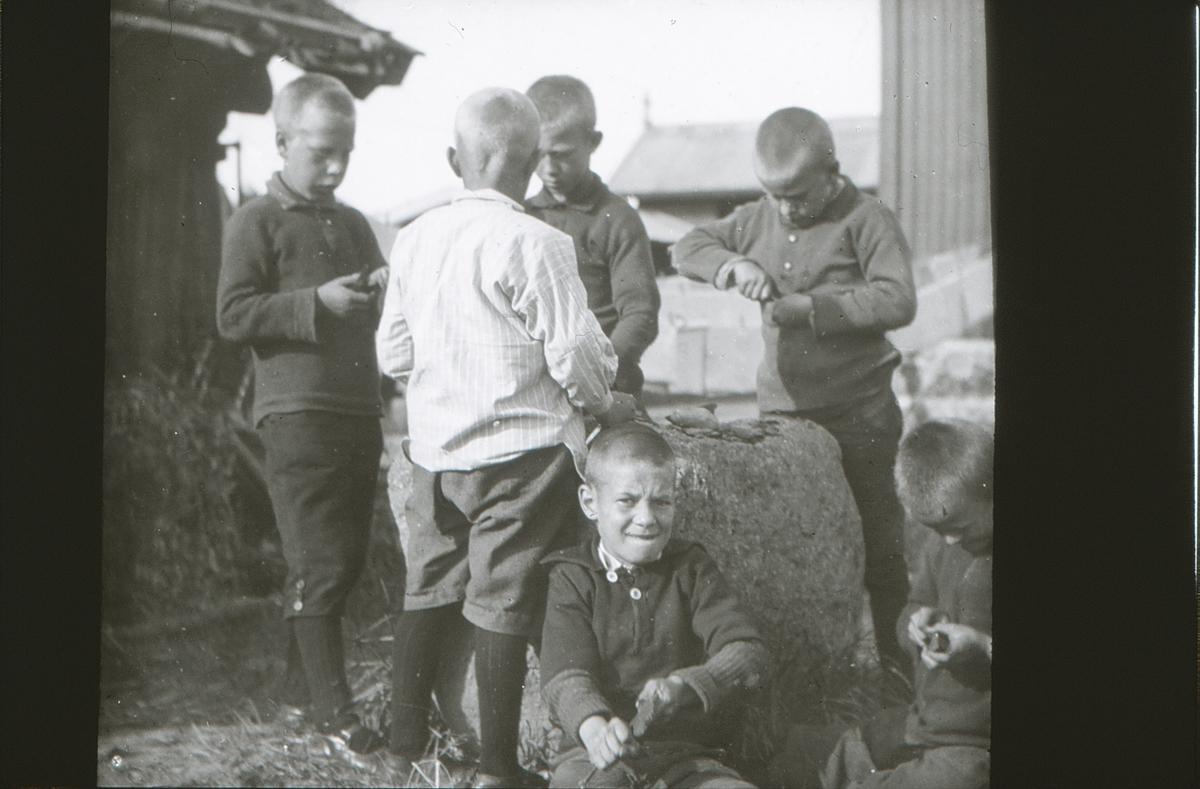 Gutter på friluftsskolen Vangen spikker.