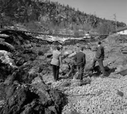 Banvallen i Svartvik hade efter den snörika vintern 1966 und