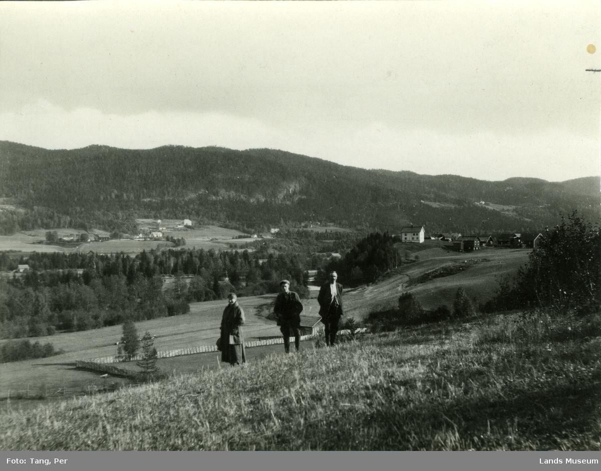 Etnas dal ved Haug