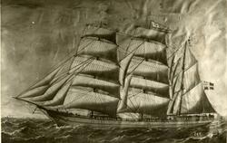 Bark 'Beda' (ex svensk 'Andrea Wilhelmina')(b. 1873, E. A. L