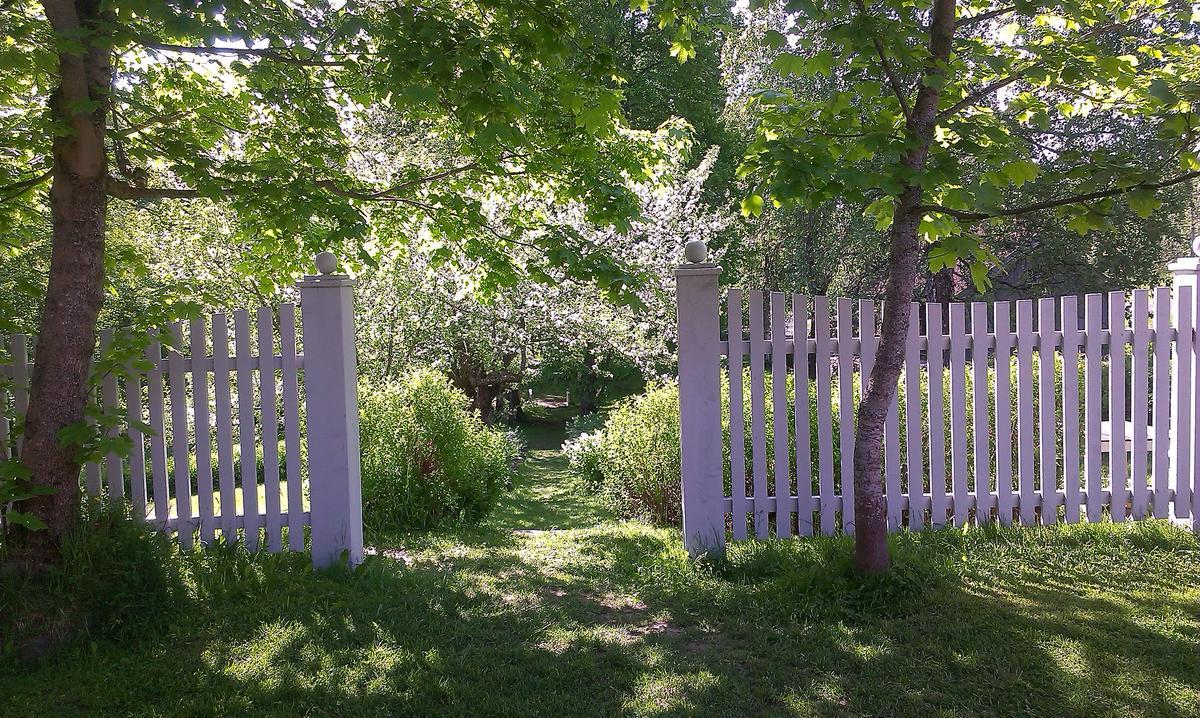 Stenbergparken med epletreblomstring