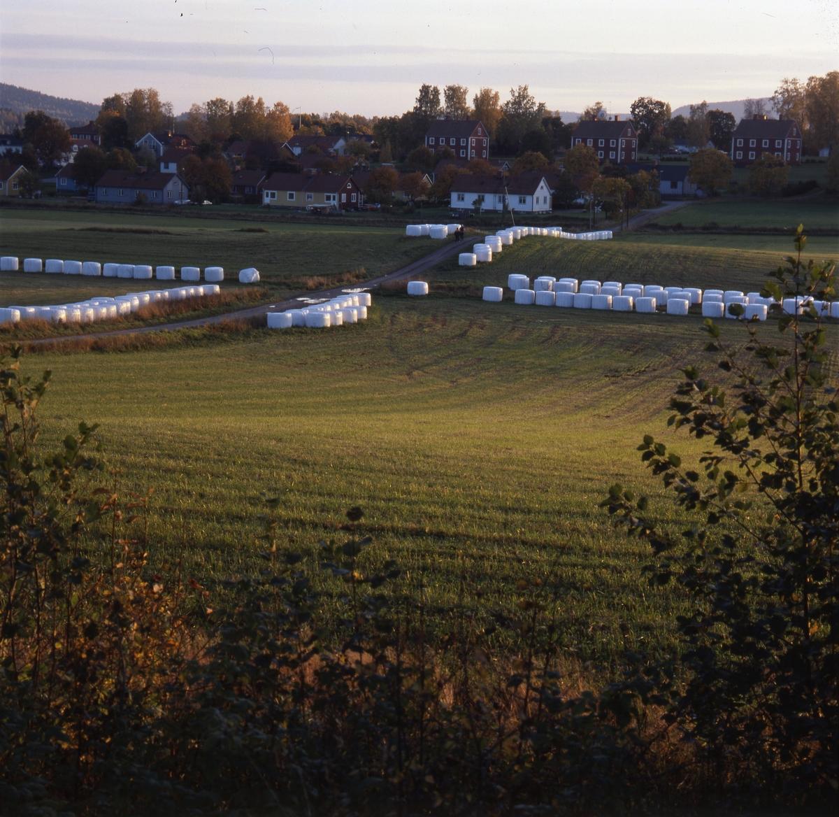 Utsikt över åkermark. I fonden ser man en by, med gårdar och villor. Där finns en byväg med vägkorsning. Längs med vägens sidor ligger låga rader av vita ensilagbalar.