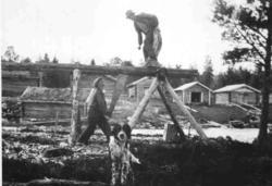 Sagstilling på Grøtgarden i bruk, håndsaging av bord og plan