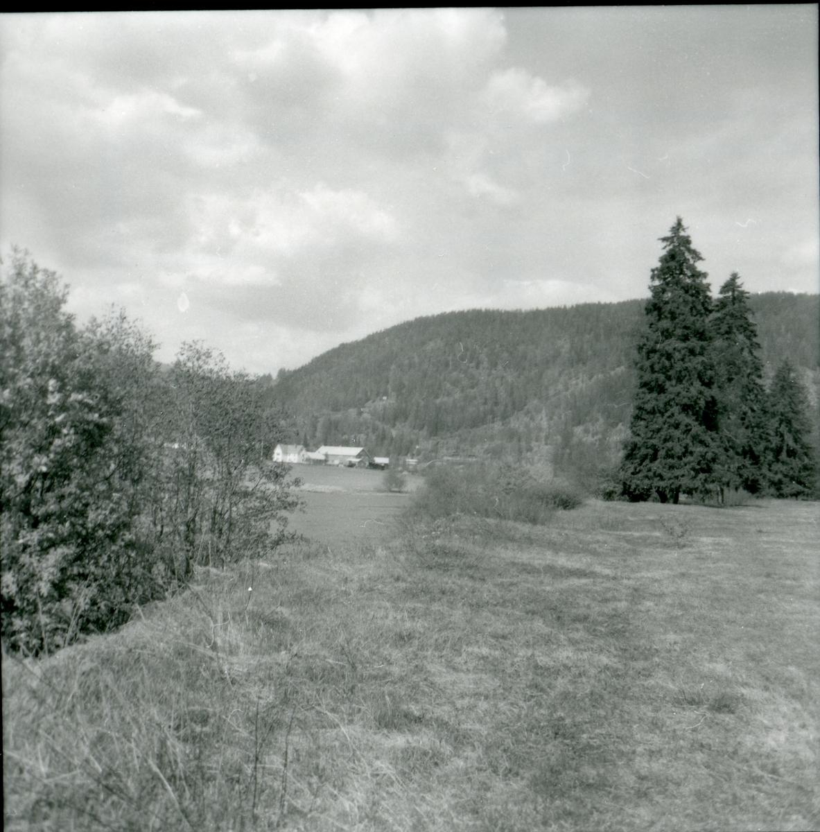 Nordre Vøll, Sør-Aurdal. Sett fra Bagnsmoen.