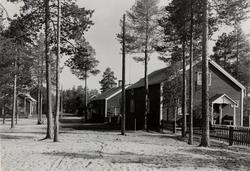Luleå Trämassefabrik. Arbetarbostäder.