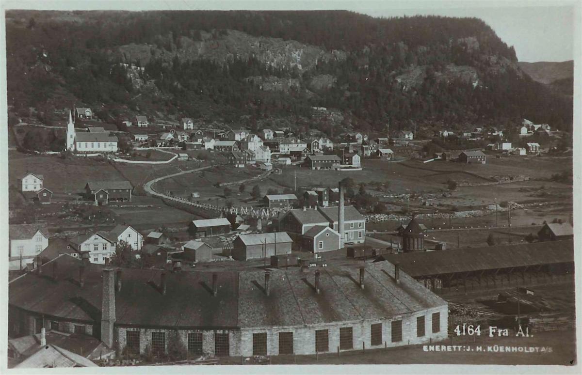 Oversiktsbilde fra Ål stasjon. Lokomotivstallen i forgrunnen.