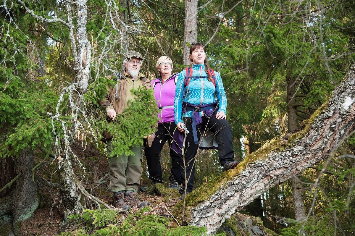 Her stod det kansje en mann i skinnklær for 1000 år siden og speidet utover Mjøsa fra Hovinsholmen, Helgøya, Hedmark, slik som Terje Syversen, Aina Syversen og Linda Fredriksberg gjør.