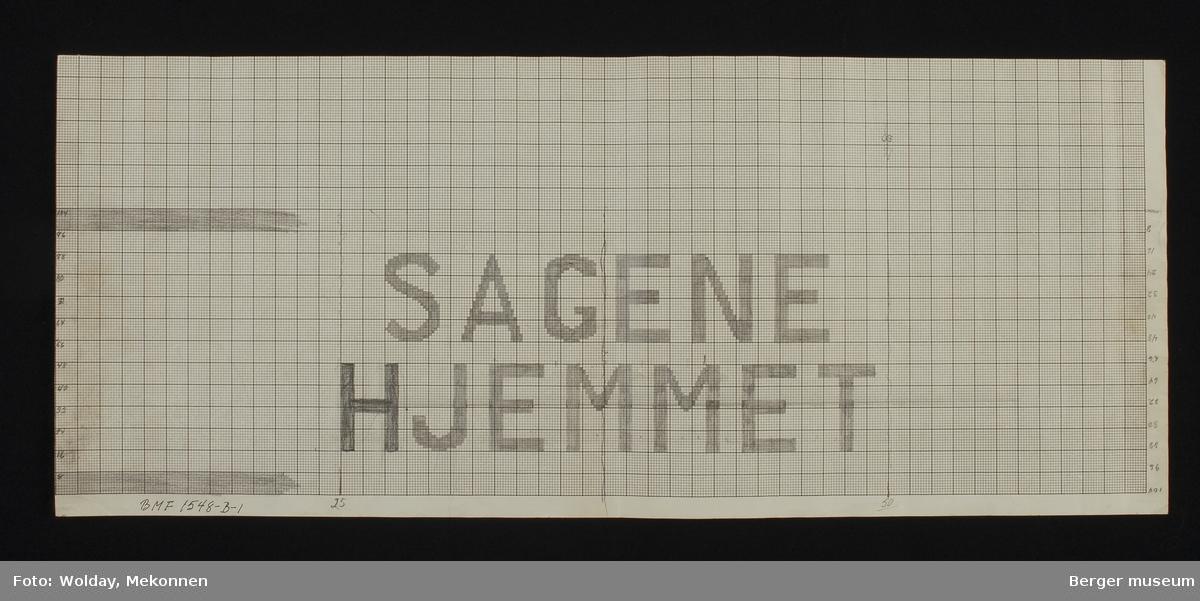 """""""SAGENE HJEMMET"""""""