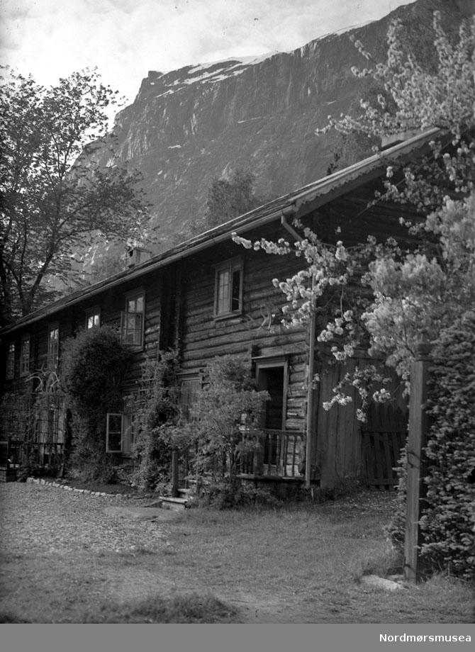gard, tun, lafta lån med veggtrær, hage, sommer. Datering er ukjent, men trolig omkring 1950 til 1960. Fra Nordmøre museums fotosamlinger, Myren-arkivet