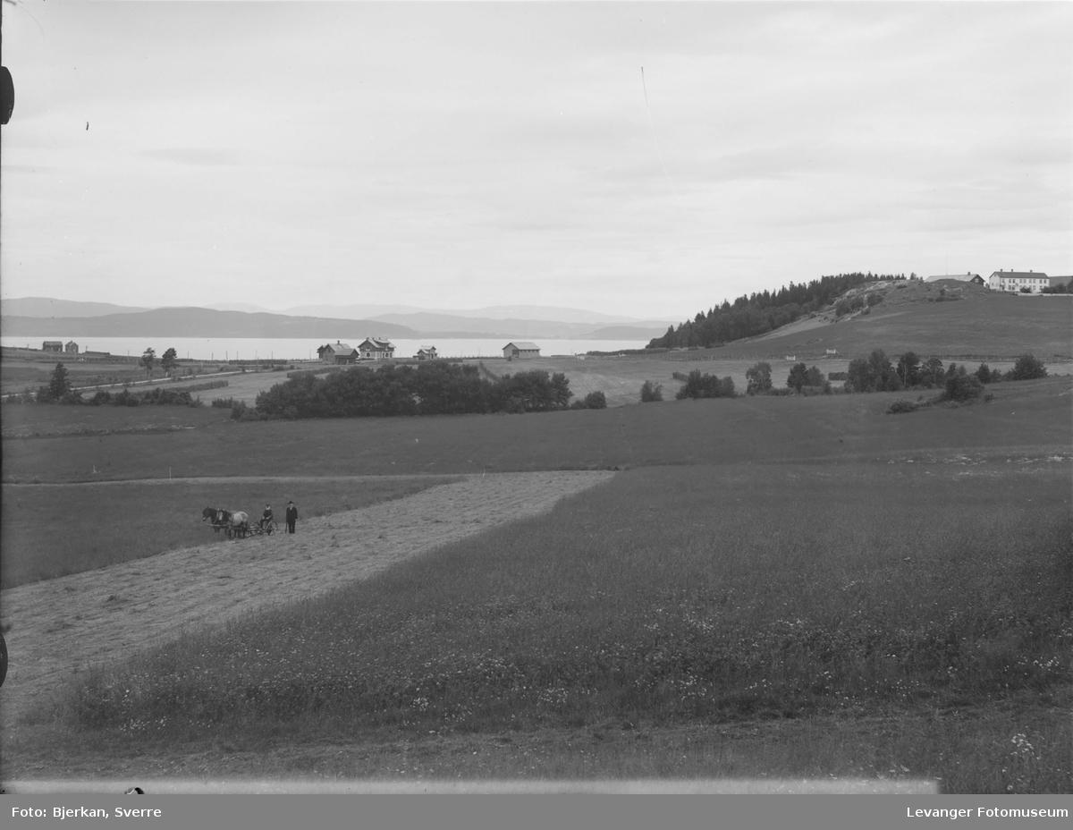 Fra landskapet rundt Skogn jernbanestasjon, slått med slåmaskin for hest.