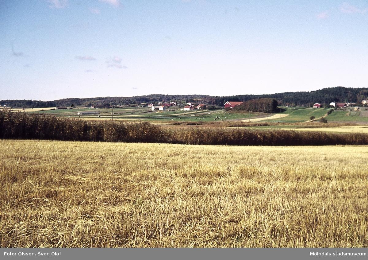 Vy över Fässberg i Mölndal, år 1965. I Bakgrunden ses Eklanda.
