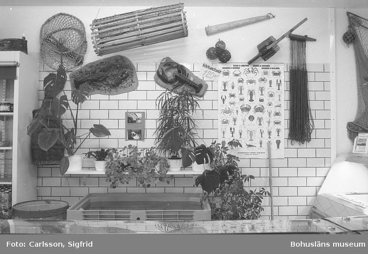 Interiör i fiskaffär, Fjällbacka 1993