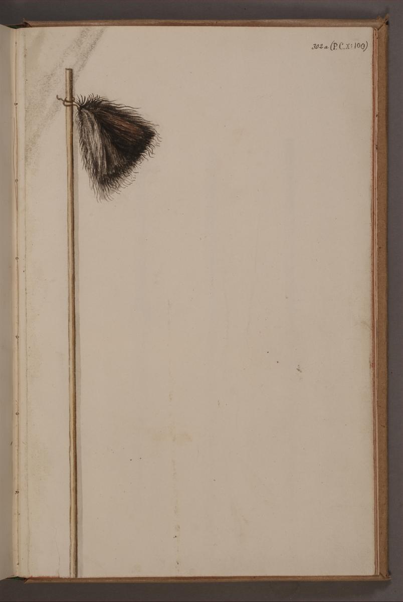 Avbildning i gouache föreställande befälstecken taget som trofé av svenska armén. Det avbildade befälstecknet finns bevarat i Armémuseums samling, för mer information, se relaterade objekt.