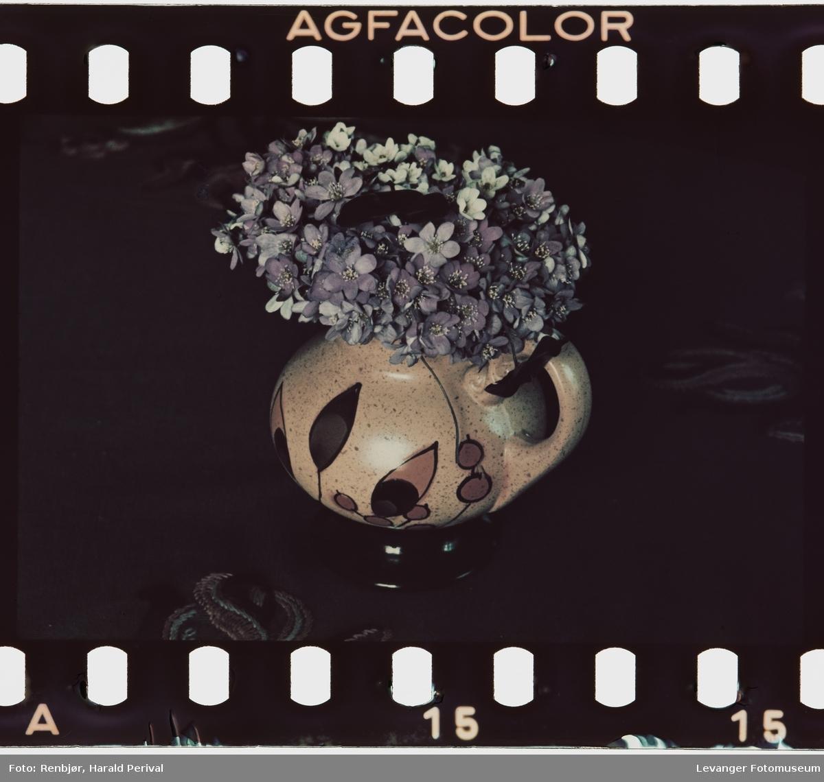 Blomster i vase ,testbilde.