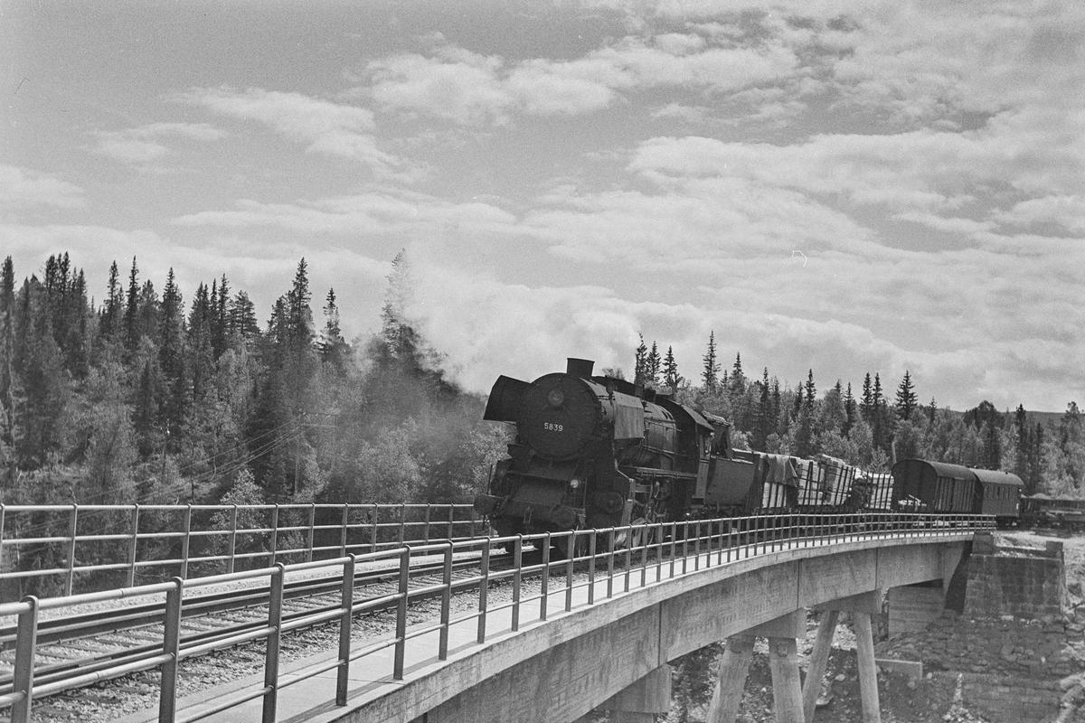 Underveisgodstog fra Hamar til Trondheim på Gaula bro ved Reitan stasjon. Toget trekkes av damplokomotiv type 63a nr. 5839.
