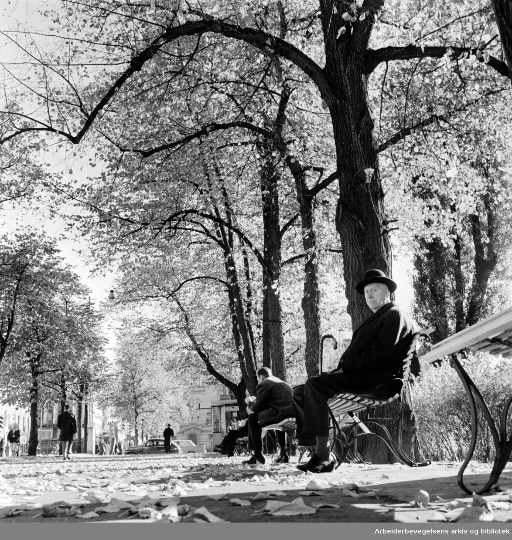 Studenterlunden. Oktober 1965