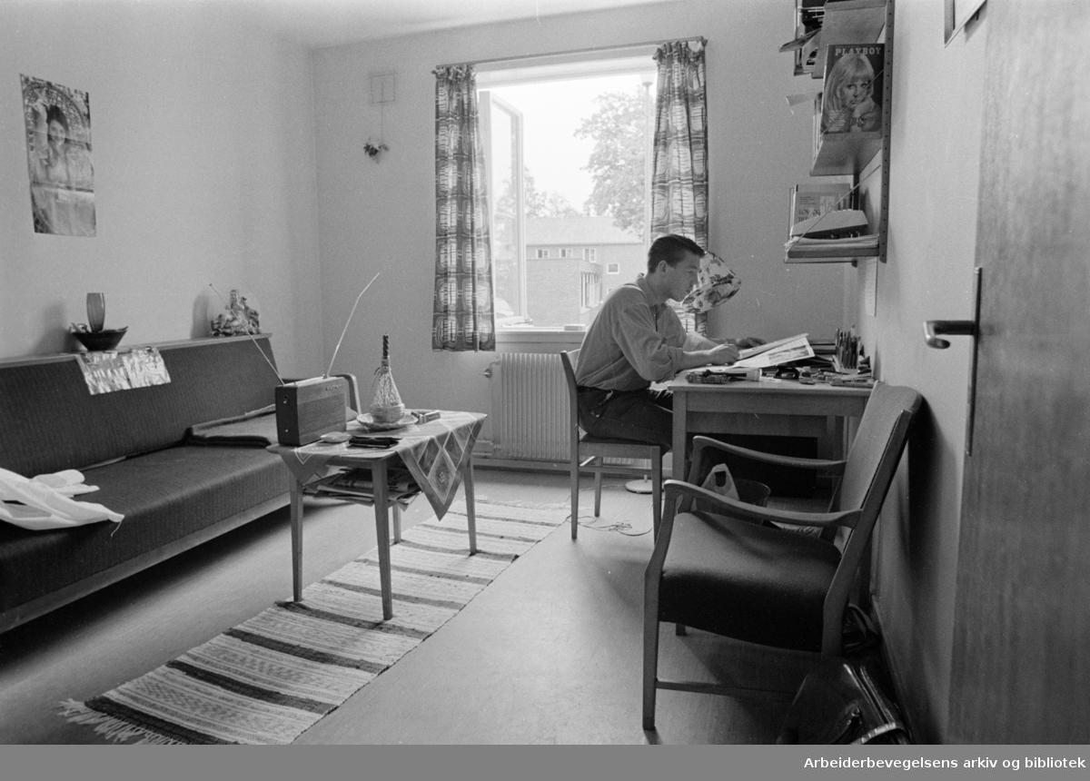 Sogn, Studentbyen. Fra en av studenthyblene. September 1968