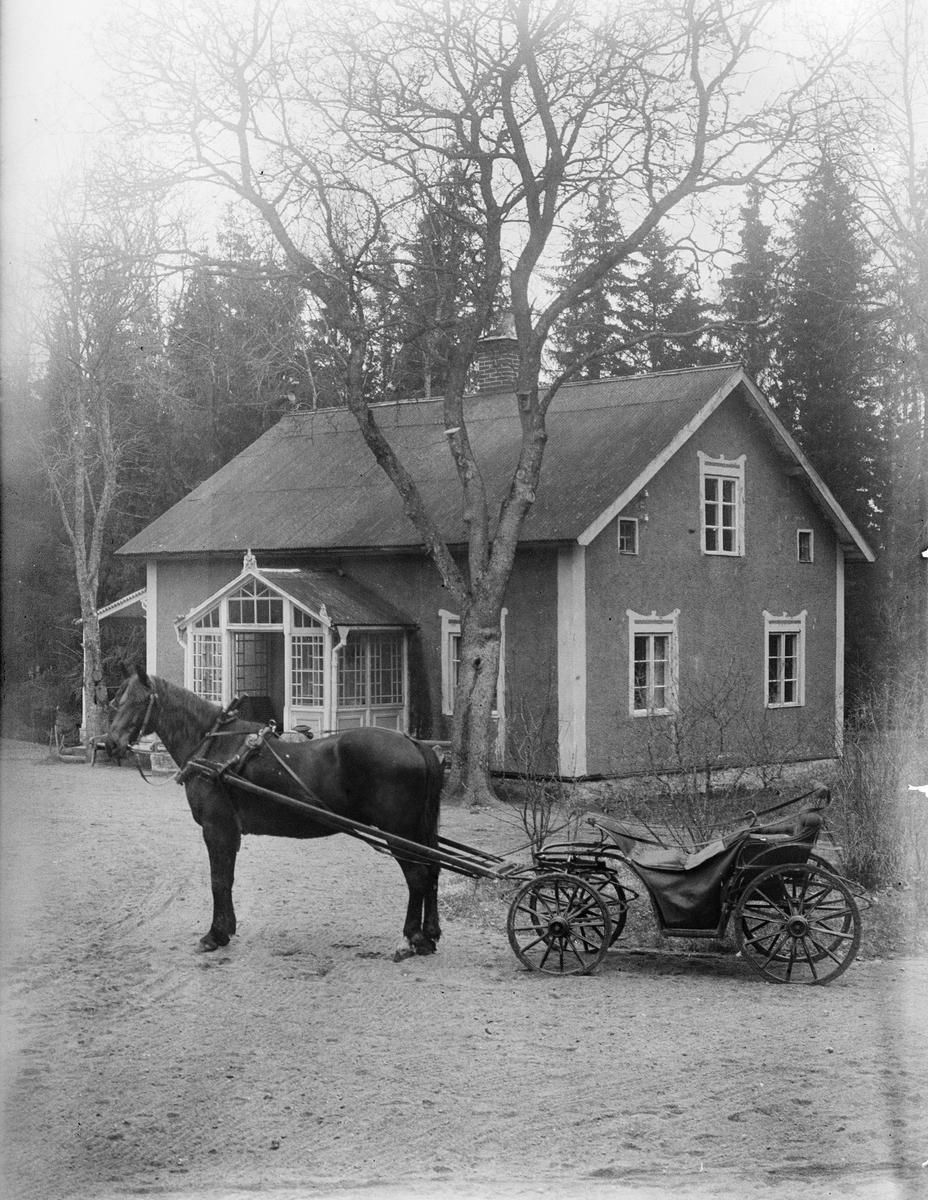 Häst och vagn framför hus, Göksbo, Altuna socken, Uppland 1925