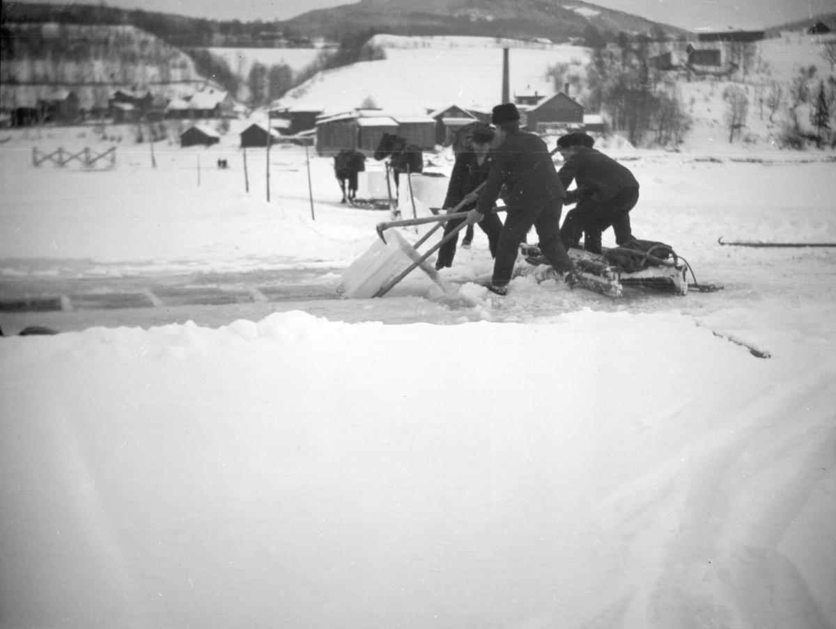 Isskjæring og kjøring av isblokker med hest utenfor Berget, Lillehammer