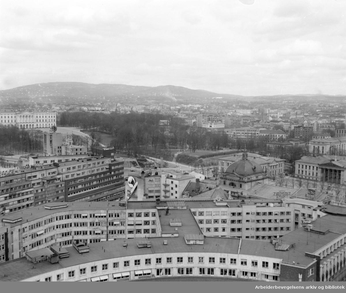 Vika. Utsikt fra Rådhuset. April 1956
