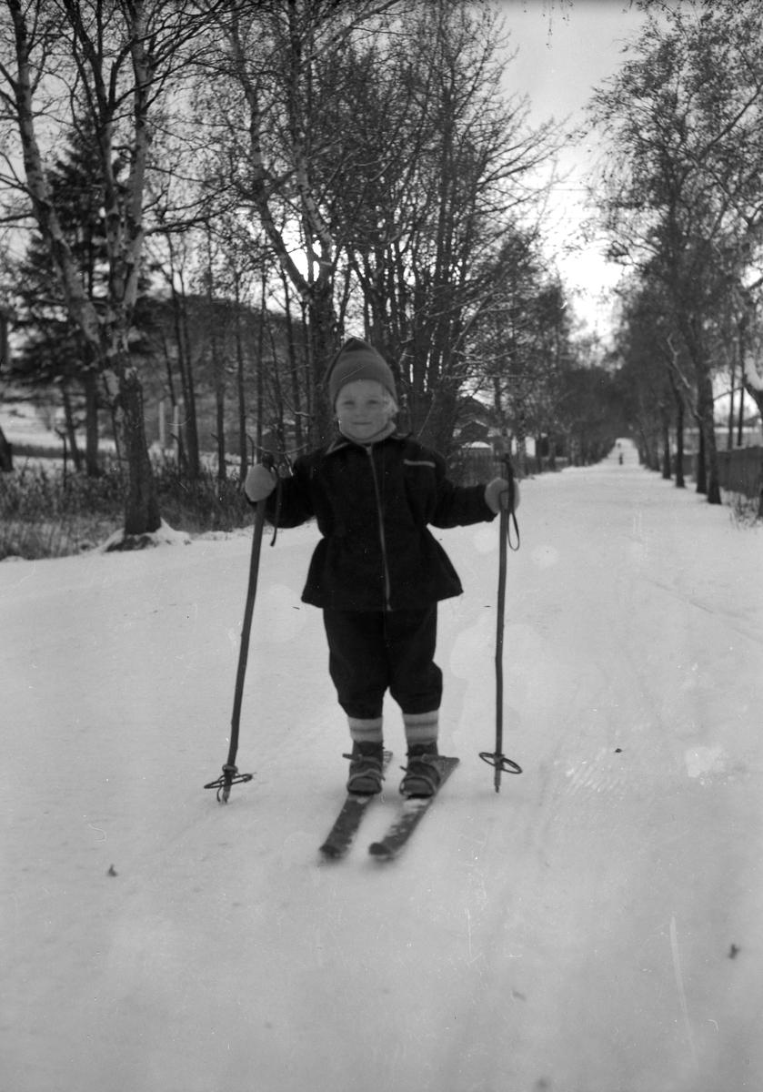 Bymarka, isskjæring, barn i lek, folk på ski