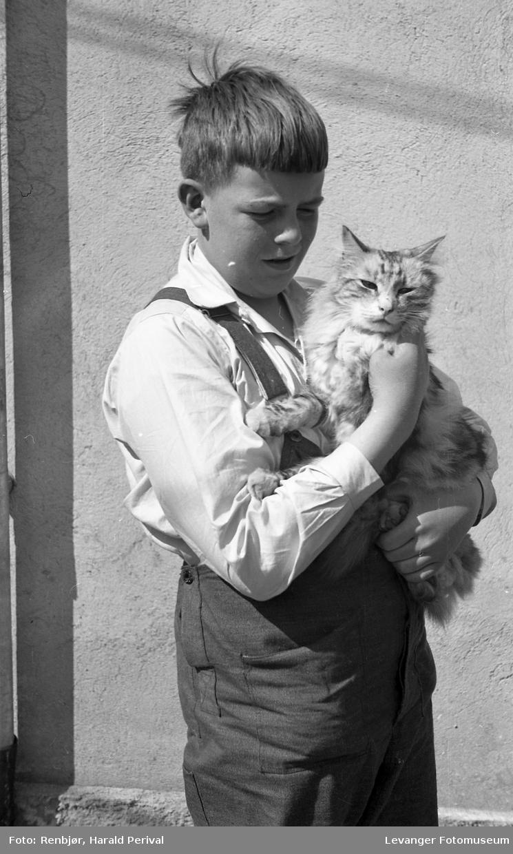 Per Renbjør og katten Monitz.