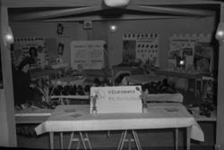 """""""Samvirkeutstilling, januar - februar 1954"""""""
