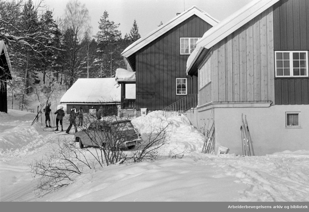 Østmarka: Sandbakken. Mars 1978