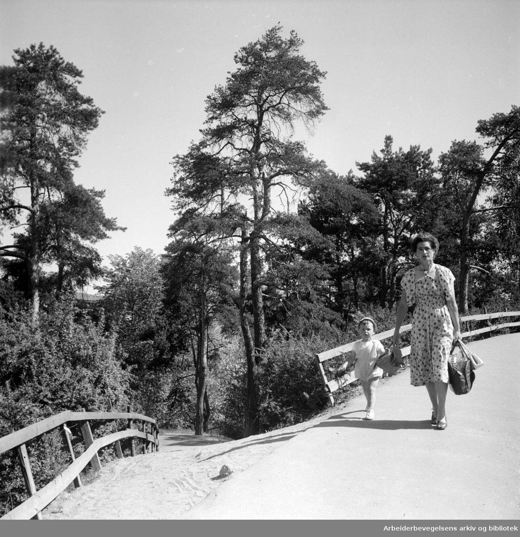 Kværnerdalen. Juni 1955