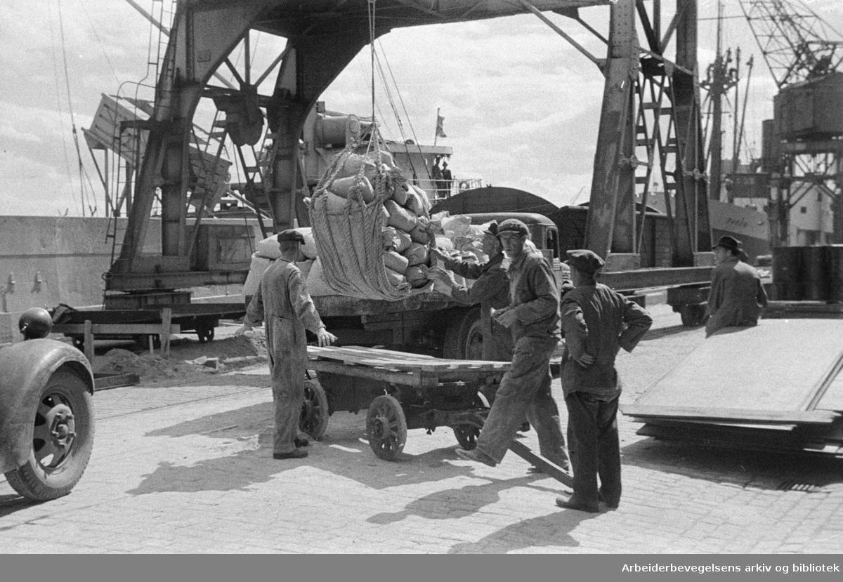 Havna. Bryggearbeidere, lasting og lossing. Sommer 1946