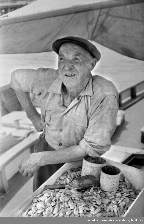 Havna. Honnørbrygga. Fisk- og rekesalg. Reketrålere..August 1967