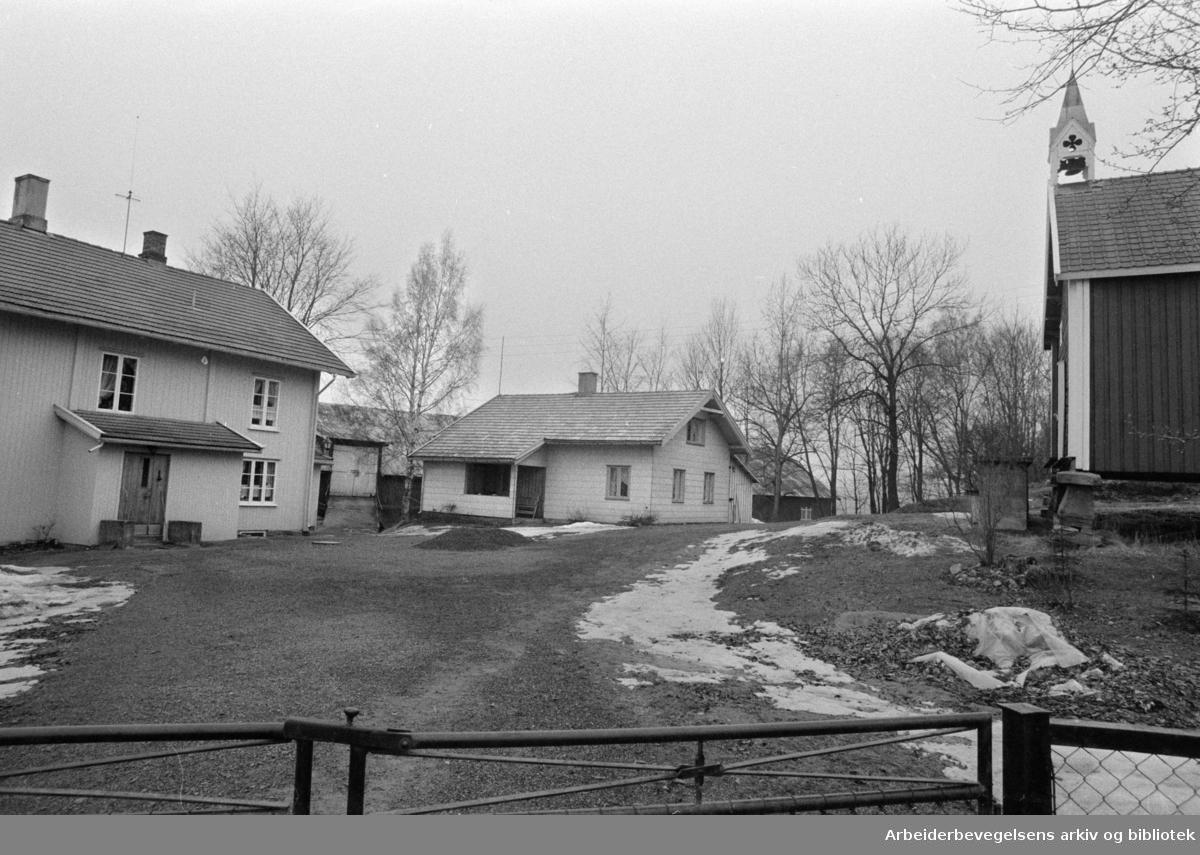 Furuset. Nedre Furuset gård. Februar 1974