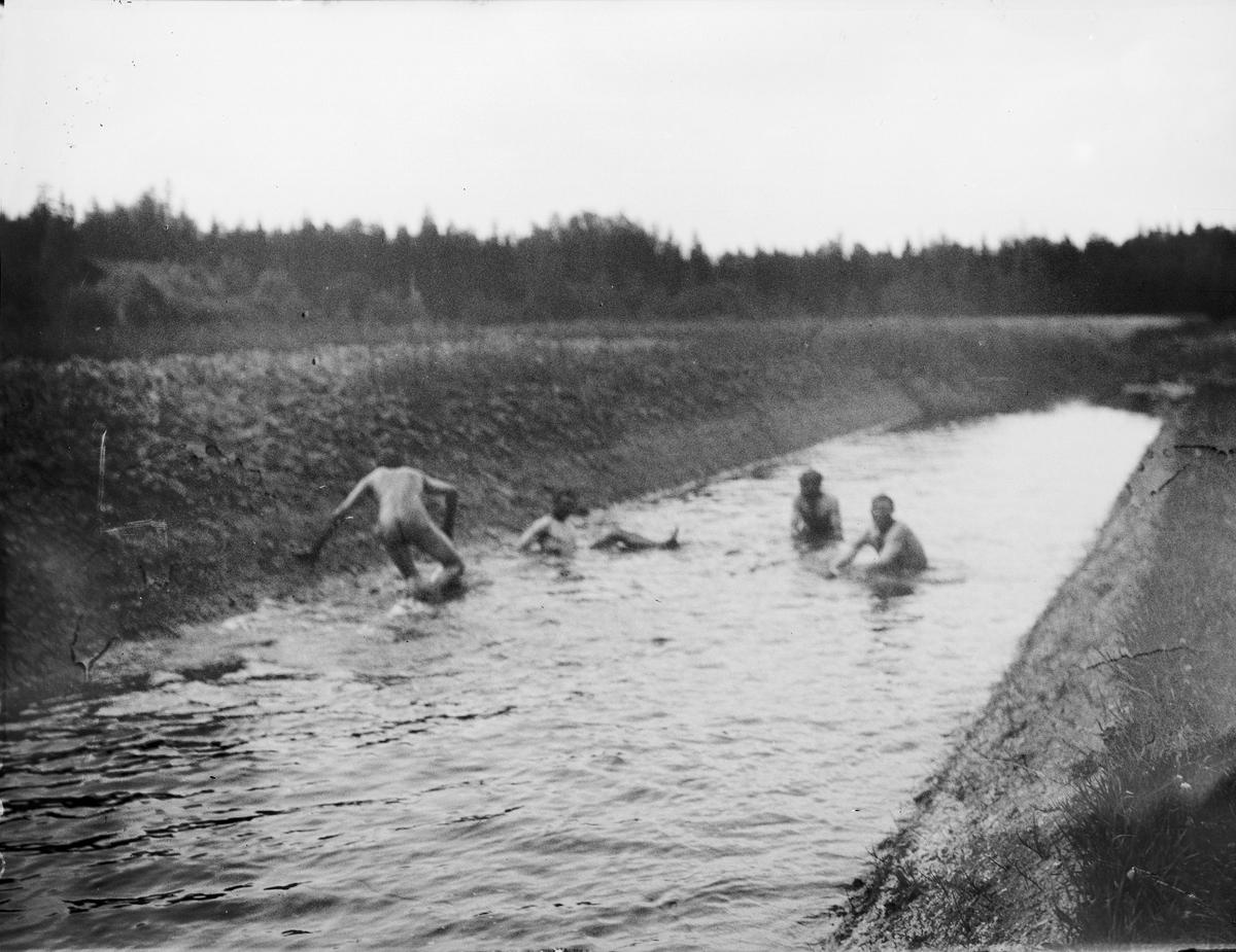 """""""Simmare i Ravastbobäcken"""", Simtuna socken, Uppland 1922"""