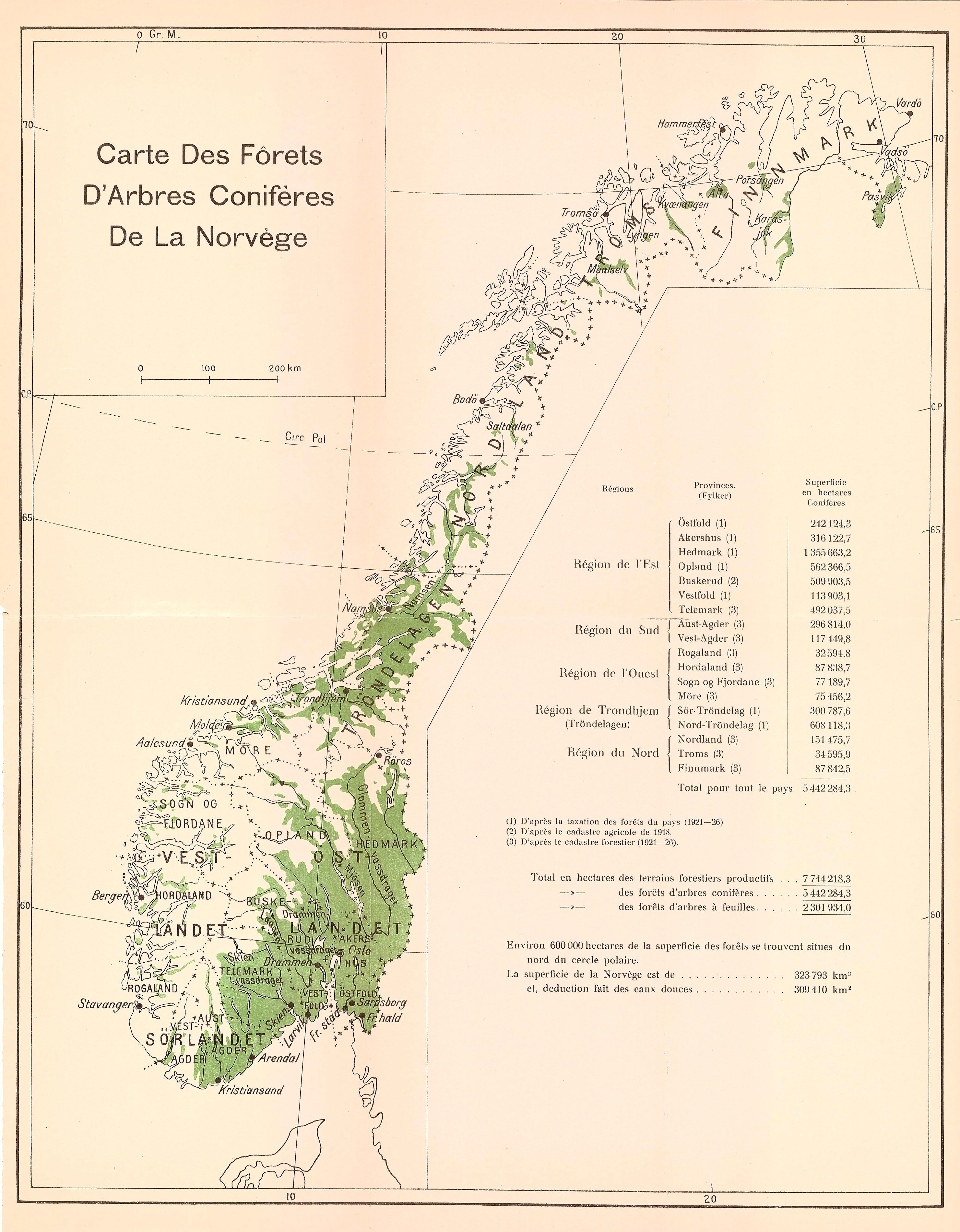 Norgeskart Der Omrader Med Betydelige Forekomster Av Barskog Er