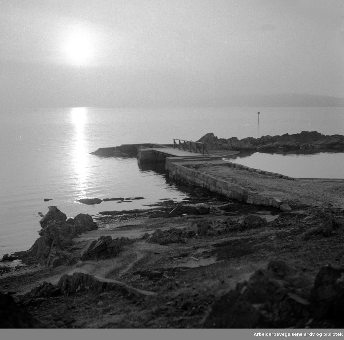 Bygdøy. Huk. Januar 1952