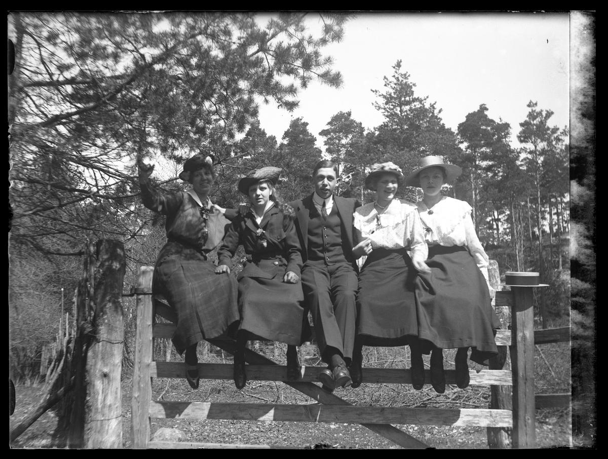 Tulli, Hugo, Ebba, Ruth och Margot fotograferade sittandes på en grind under Kristi himelsfärdsdagen.