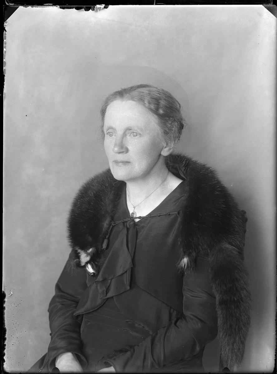 """Porträtt av kvinna klädd i mörk klänning och jacka samt med svart pälsboa om axlarna. I fotografens egna anteckningar står det """"Fru Enander""""."""