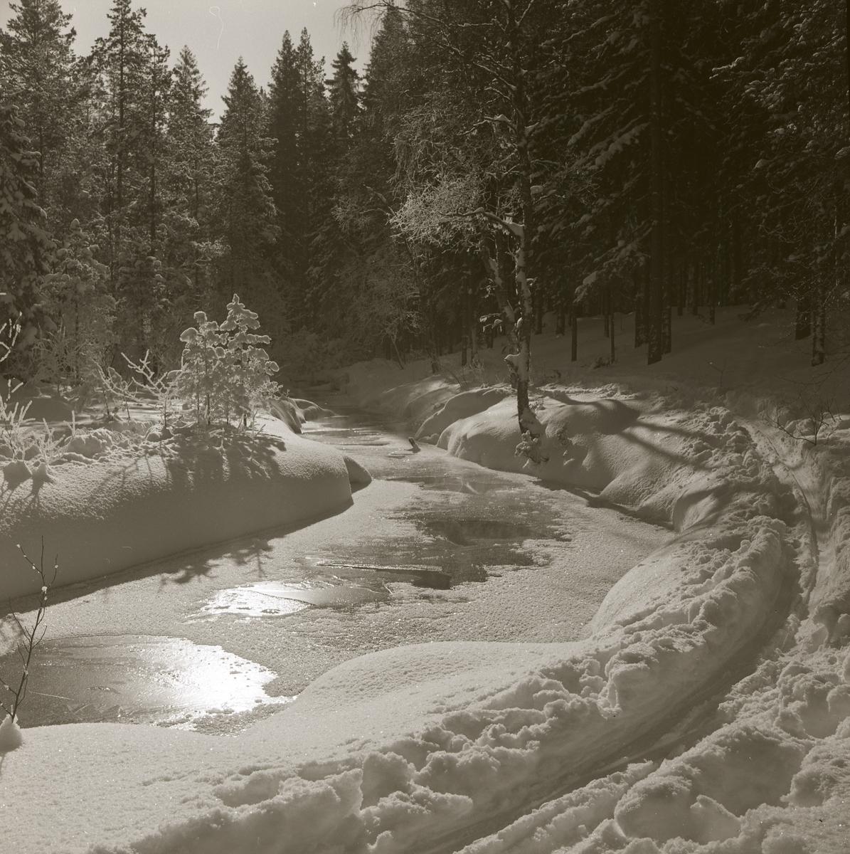 Hölesjöån slingrar fram genom ett snötäckt landskap den 25 december 1963.